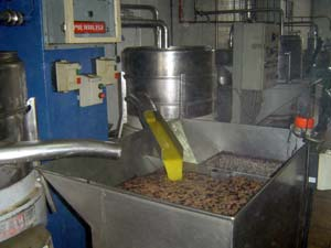 A modern olive oil mill